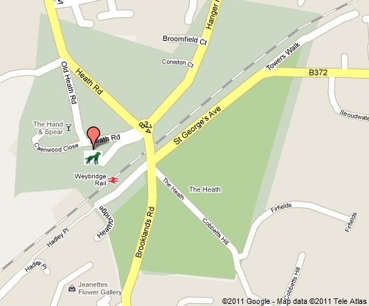 Location Map Of St Georges Vet